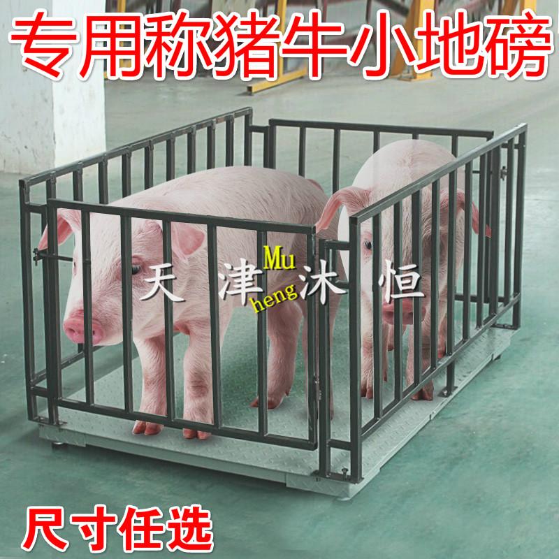 天津300kg牲畜秤FOB价格